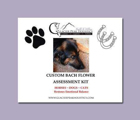 bach flower remedy for dogs