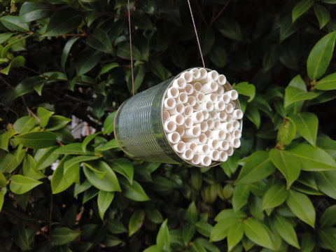 Bee hotel from paper straws