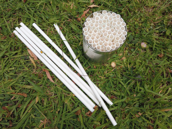 Crafting Paper Straws