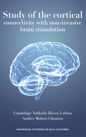 Study of the cortical connectivity with non-invasive brain stimulation