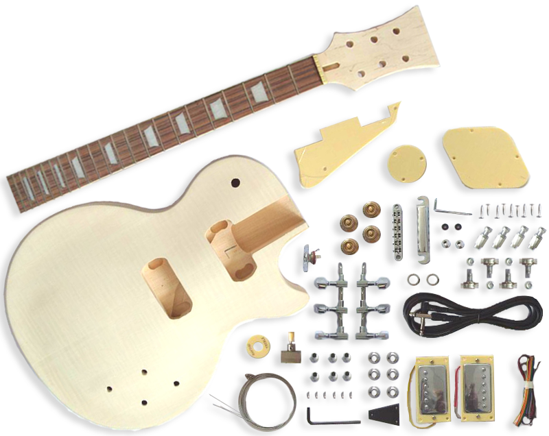 LP Guitar Kit