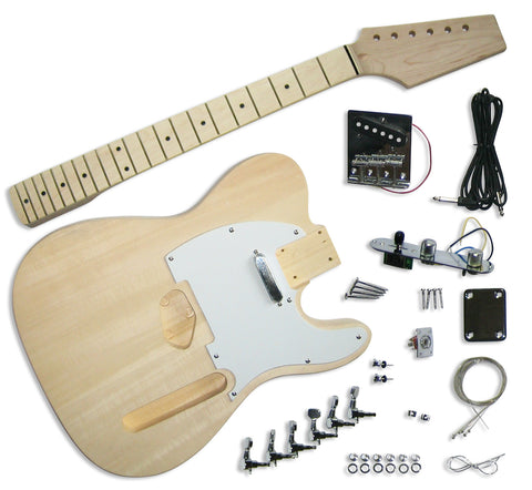 TE Guitar Kit