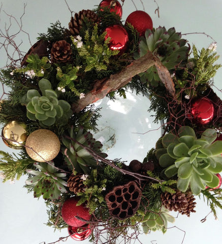 Succulent and Cone Wreath with Gold Ribbon & stars