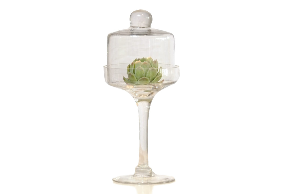 Glass presentation goblet with cover