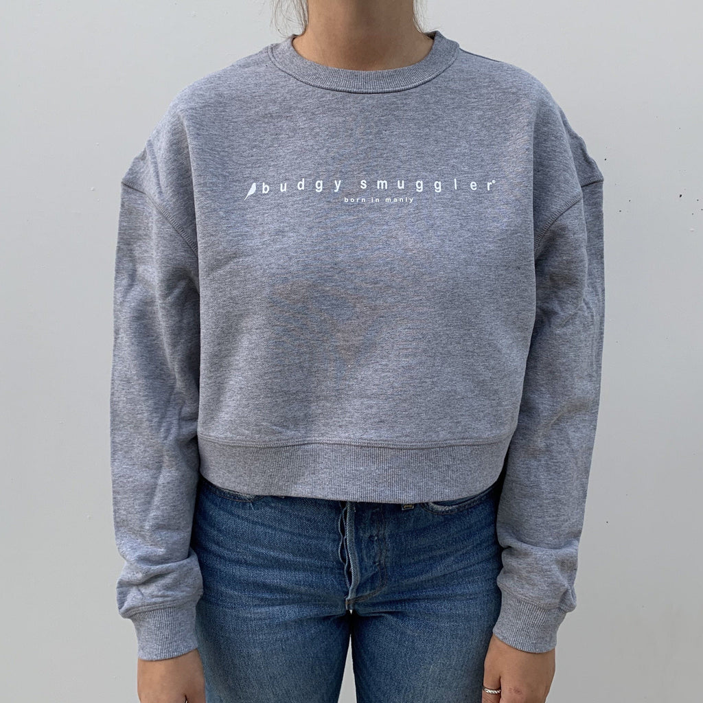 Light Grey Cropped Jumper