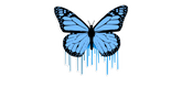 Blue Butterfly Drips Sticker