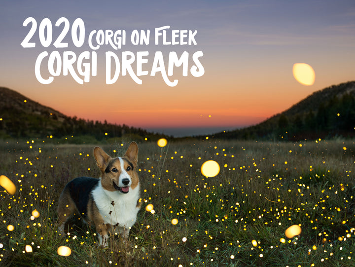 *New* Corgi On Fleek 2020 Calendar - Corgi Dreams