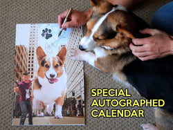 Special Autographed Corgi On Fleek 2019 Calendar - Corgi Dreams