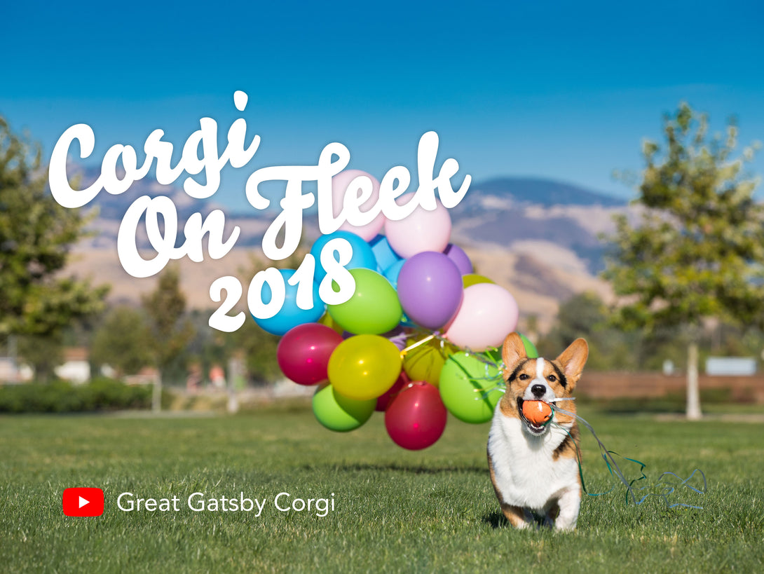 *New* Corgi On Fleek 2018 Calendar