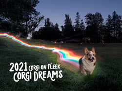 *New* Corgi On Fleek 2021 Calendar - Corgi Dreams
