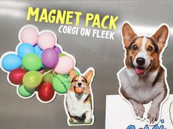 Corgi On Fleek Magnet Pack [2 Magnets]