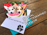 "Corgi Love Greeting Card ""I'd share my food with you"""