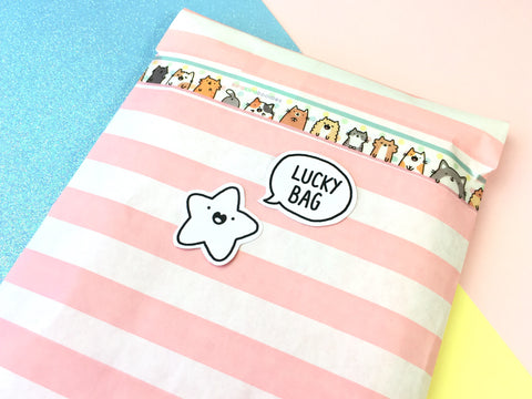 Kawaii KiraKira Lucky Bag!