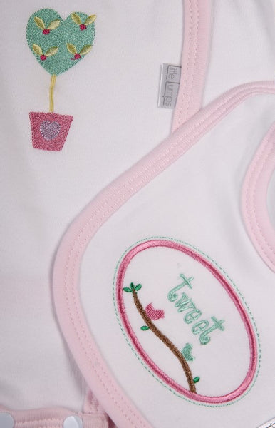 Two Pack Babygro with Bib for Girls - Little Lumps
