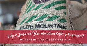 Why Jamaican Blue Mountain Coffee is Typically More Expensive