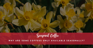 Why are Some Coffees Only Available Seasonally?