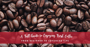 A full guide to enjoying fresh coffee