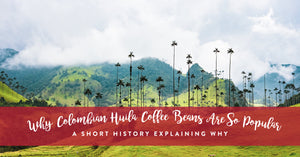 Why Colombian Huila coffee beans are so popular