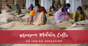 Monsoon Malabar Coffee - An Indian Sensation