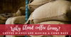 Why Blend Coffee Beans?