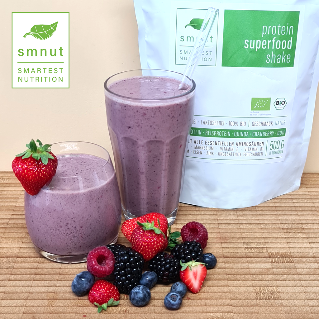 Bio Protein Superfood Shake – Natur