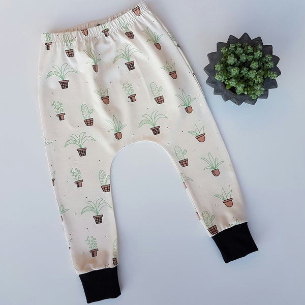 Cactus Harems 18-24m Ready to Ship - Hello Pickle!