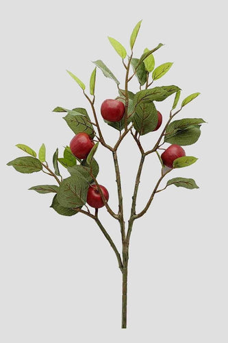 Carraig Donn HOME Wreaths and Garlands Apple Branch