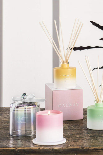 Galway Crystal Christmas Candles & Diffusers Cactus Blossom Diffuser