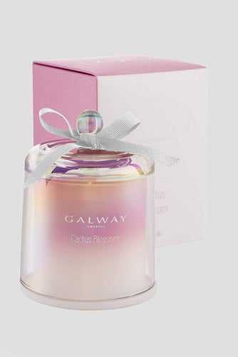 Galway Crystal Christmas Candles & Diffusers Catctus Blossom Candle