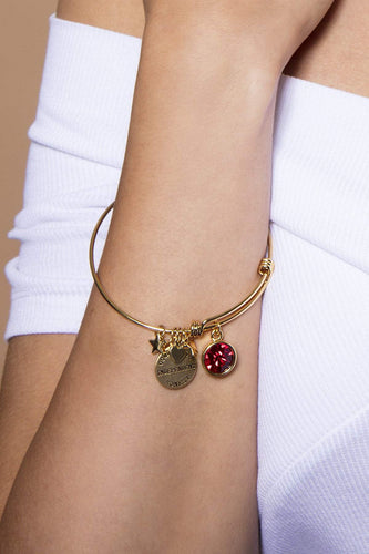 Cherish Bracelets Gold January Birthstone Bracelet