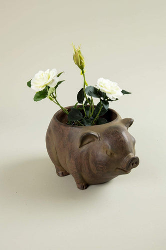 Carraig Donn HOME Planters Planter Pig