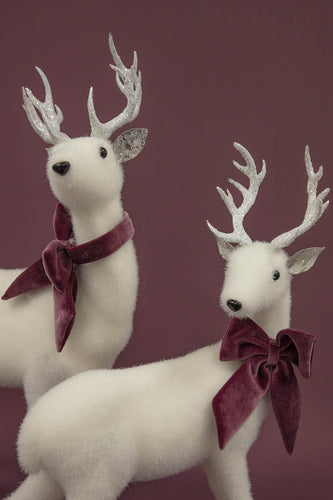Carraig Donn HOME - Christmas Christmas Decorations Small White Reindeer