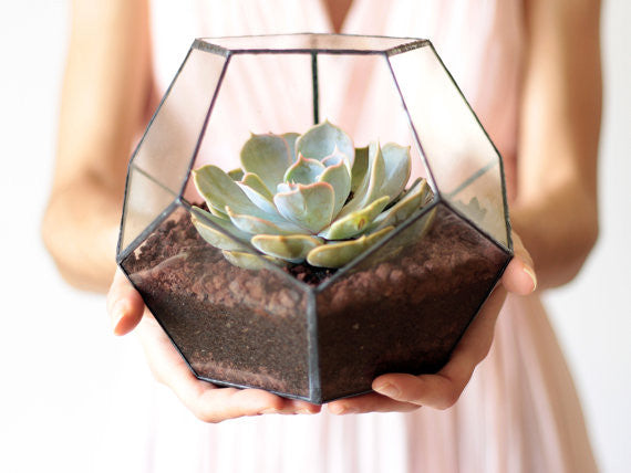 https://www.etsy.com/listing/198166093/geometric-glass-terrarium-container?ref=related-3