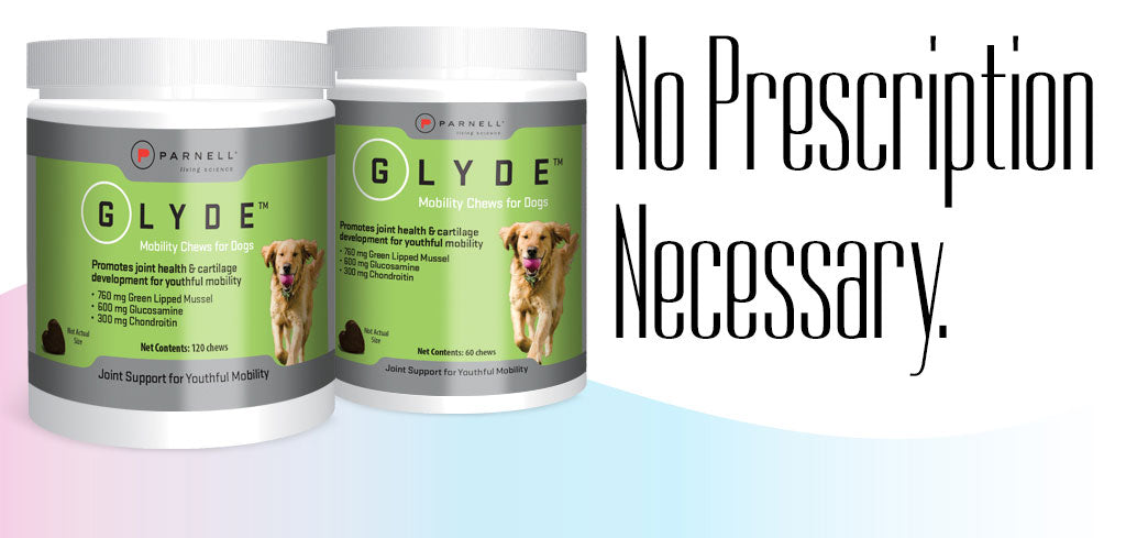 Glyde Mobility Chews for Dogs - No prescription necessary