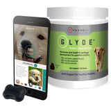 Glyde and FitBark Dog Activity Bundle
