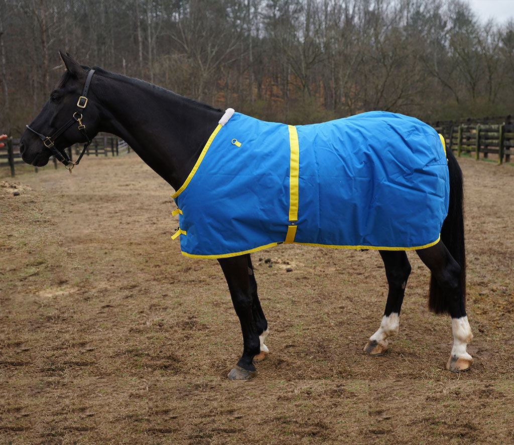 Dry Horse Turnout Blanket