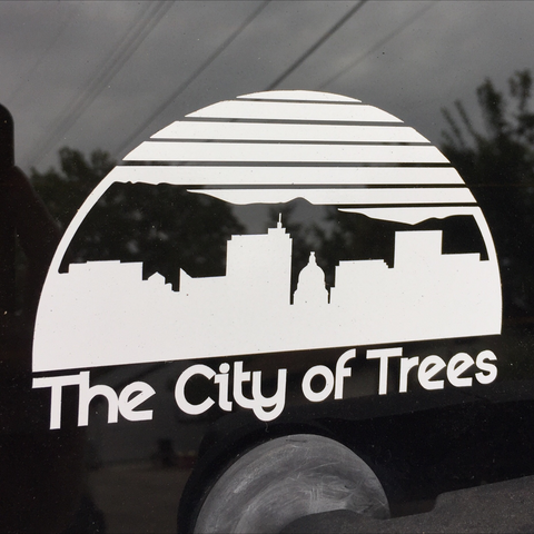 Boise Skyline Diecut Sticker