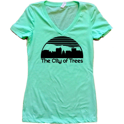 Boise Idaho Skyline Women's V-Neck Shirt