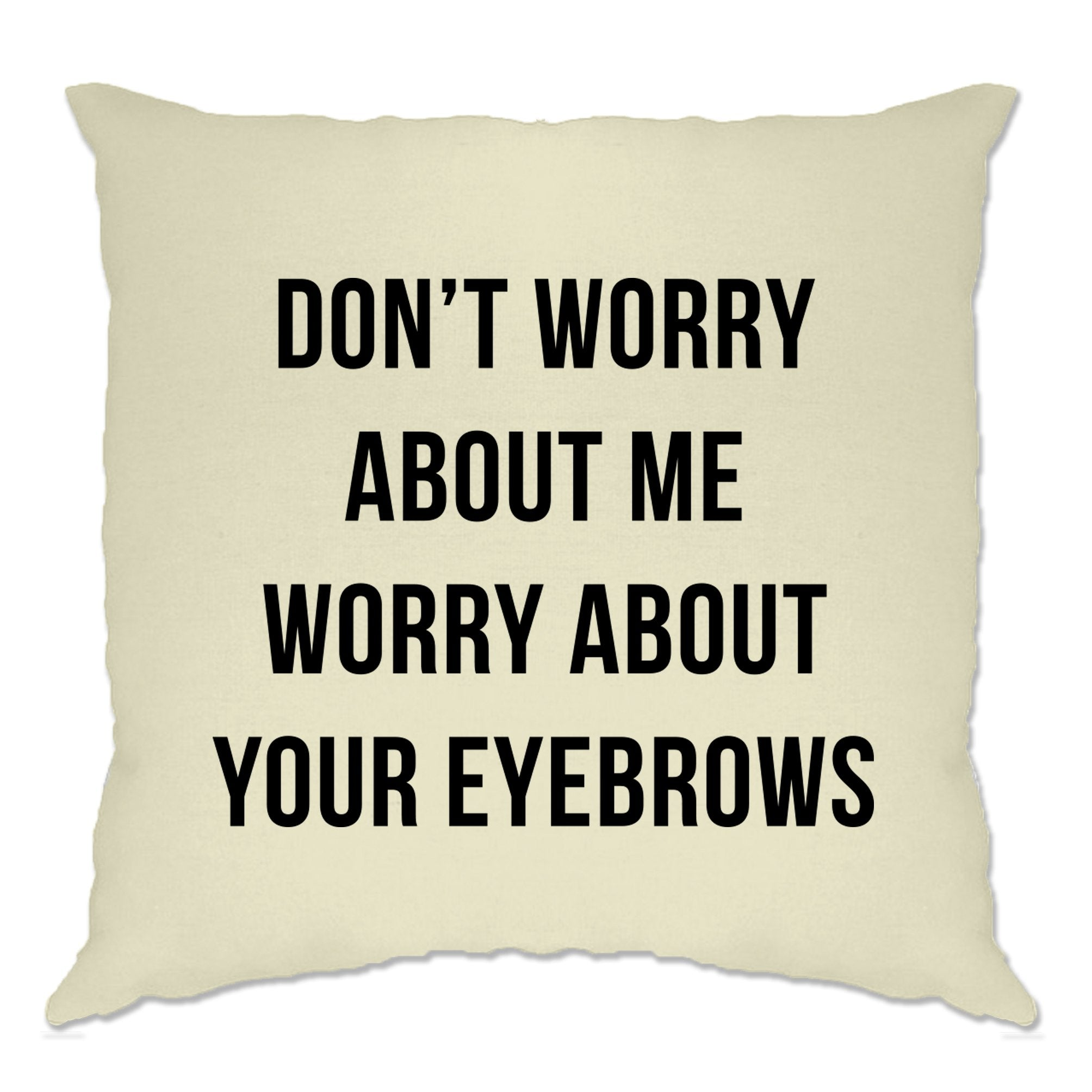 Novelty Sassy Cushion Cover Worry About Your Eyebrows Joke