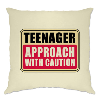 Approach With Caution Teenager Cushion Cover