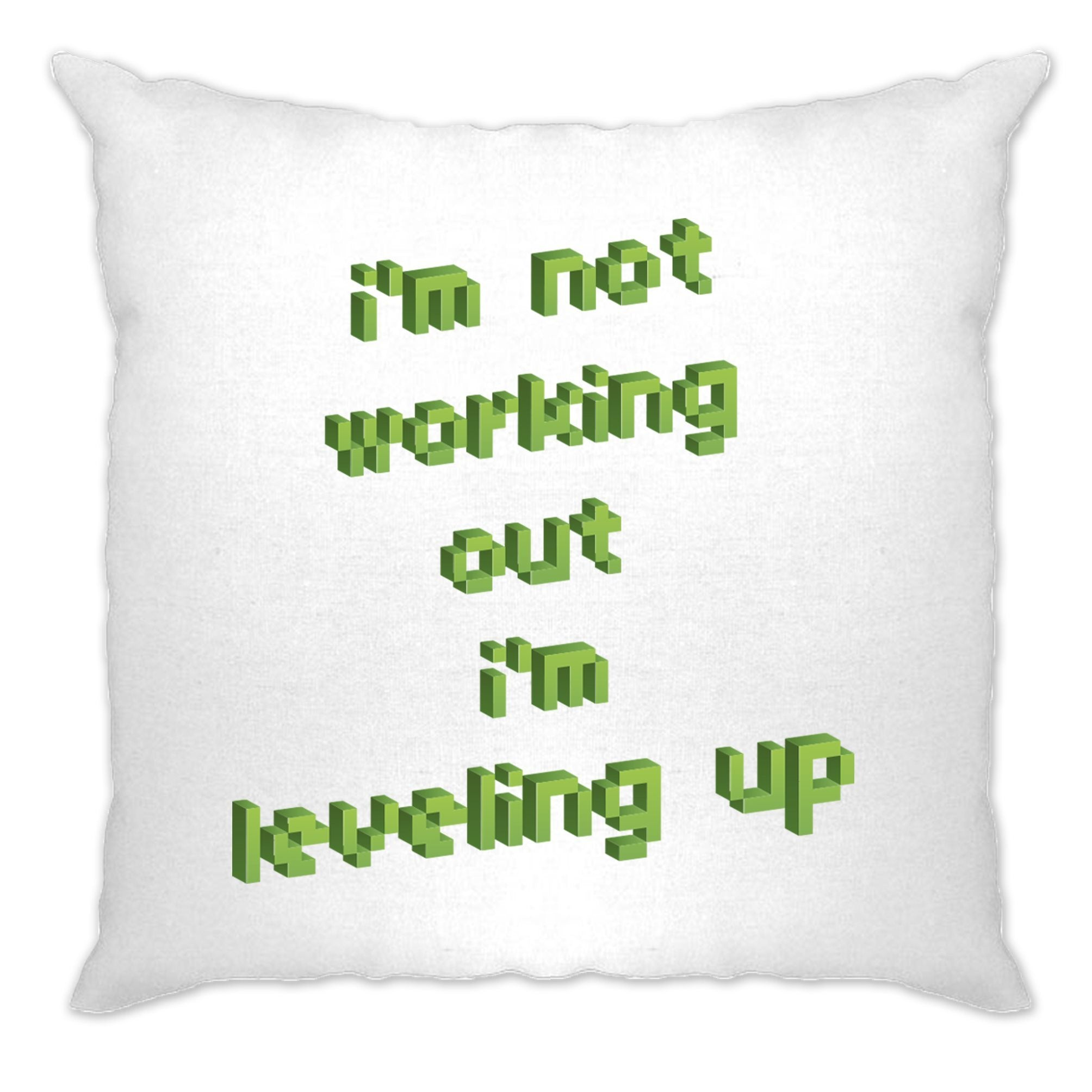 Joke Gaming Cushion Cover Not Working Out, I'm Levelling Up