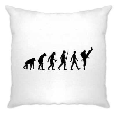 Martial Arts Cushion Cover The Evolution Of Karate