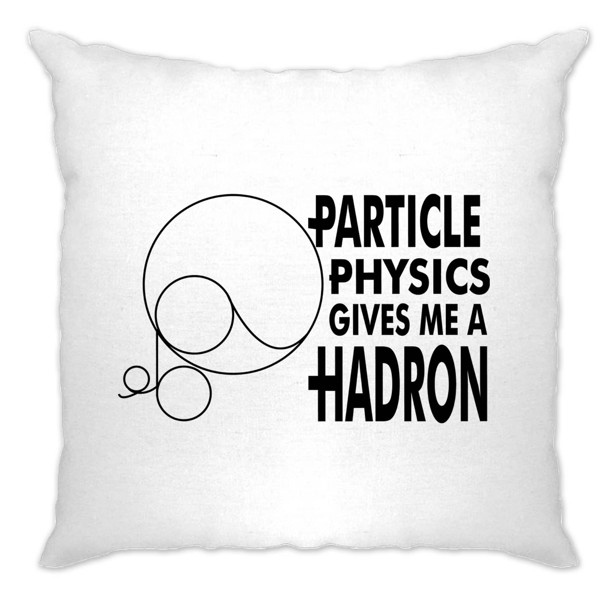 Rude Nerdy Cushion Cover Particle Physics Gives Me A Hadron