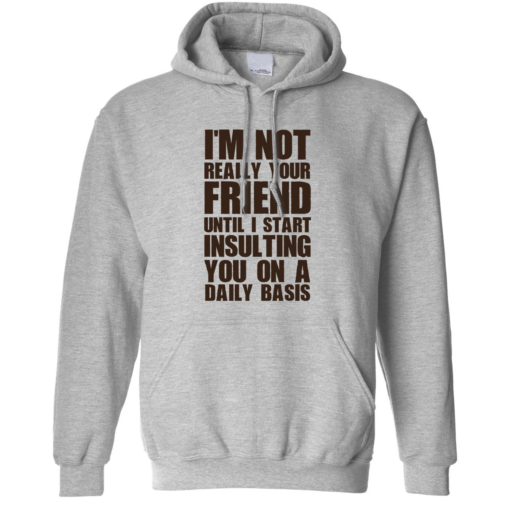 Novelty Hoodie I'm Not Your Friend Until I Insult You Hooded Jumper