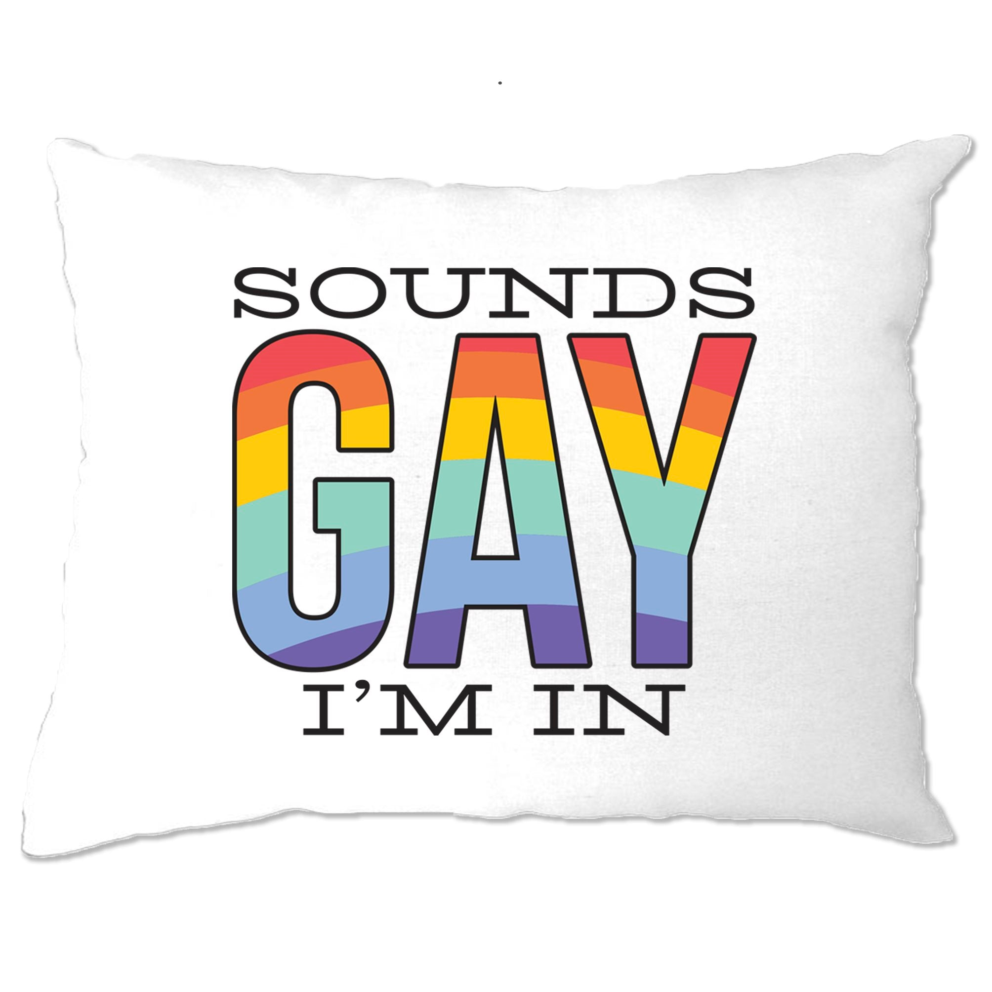 Pride Pillow Case Sounds Gay I'm In Rainbow Text