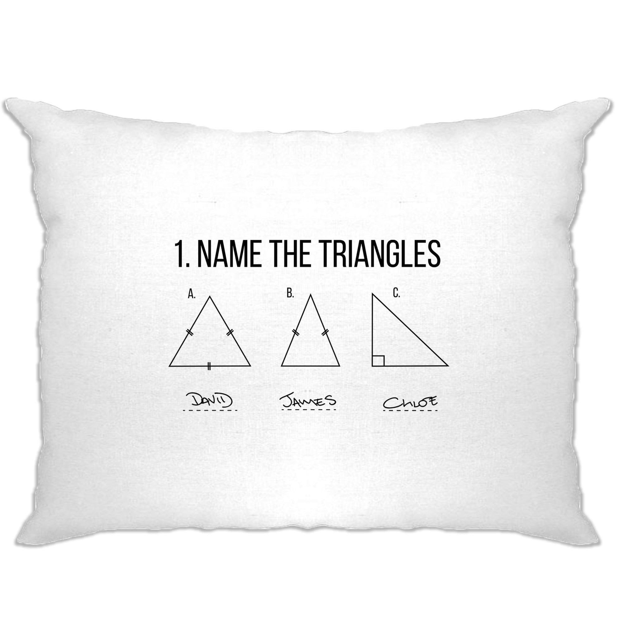 Novelty Math Pillow Case Name The Triangles Exam Answer