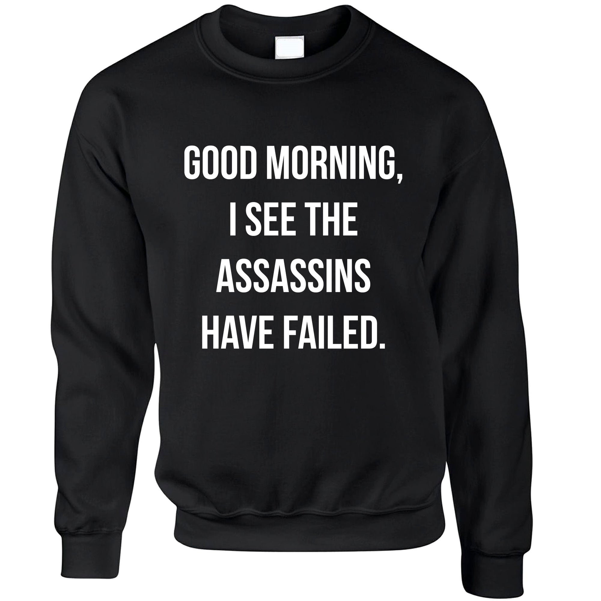 Novelty Jumper I See The Assassins Have Failed Joke Sweatshirt Sweater