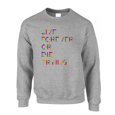 Inspirational Jumper Live Forever Or Die Trying Sweatshirt Sweater