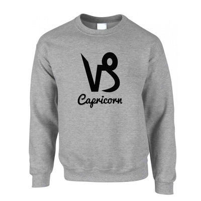Horoscope Jumper Capricorn Zodiac Star Sign Birthday Sweatshirt Sweater