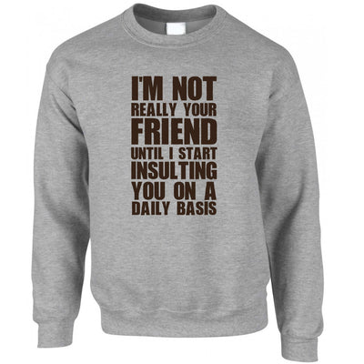 Novelty Jumper I'm Not Your Friend Until I Insult You Sweatshirt